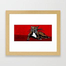 Winnie cat eats birds Framed Art Print