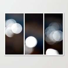 Dazed and Confused - Triptych Canvas Print