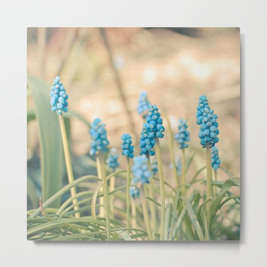 Forest of Blue Metal Print