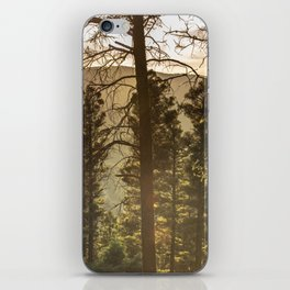 Mountain Forest New Mexico - Nature Photography iPhone Skin