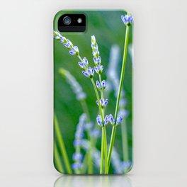 New Lavender iPhone Case
