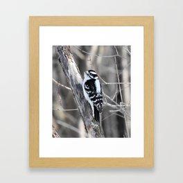 Pic bois Framed Art Print