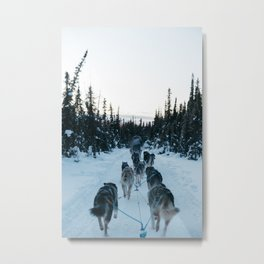 SNOW - HUSKIES - SLED - FOREST Metal Print