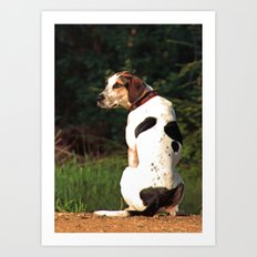 hound dog Art Print