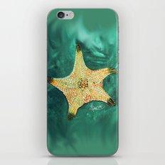 Starfish ~ 2 iPhone & iPod Skin
