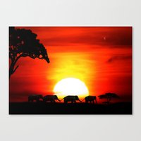 africa Canvas Prints featuring Africa by Selina Morgan