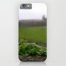 Ancient Windowsill Slim Case iPhone 6s