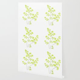 Maidenhair Fern Wallpaper