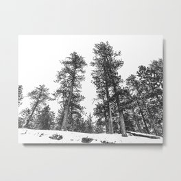 Snowscape Sky // Winter Trees Black and White Landscape Snow Ski Snowboard Photography Metal Print