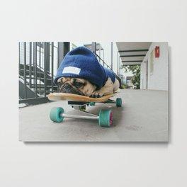 Skater Pug Metal Print