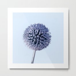 Monochrome - Starry night on the thistle globe Metal Print