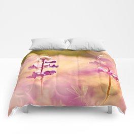 Let the sun soak in Comforters