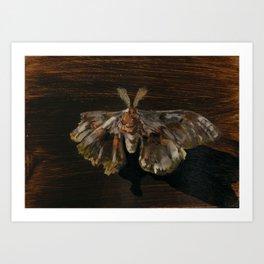 Moth Prophecy Art Print