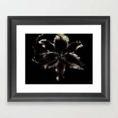 Dark Lily Framed Art Print