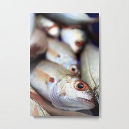 Fresh catch Metal Print