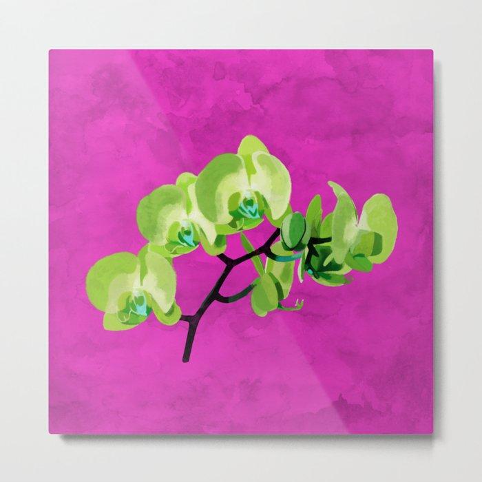 Orchid, green Metal Print