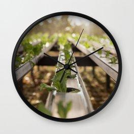 Germinate Wall Clock