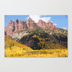 Autumn Gold and Maroon Canvas Print