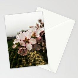 Flor de Almendro Stationery Cards