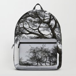 Winter Reflection Backpack