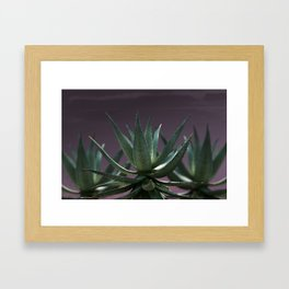 Aloe Aloe Aloe Framed Art Print