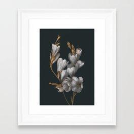 Night Flowers Framed Art Print