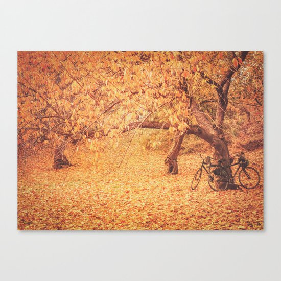 Autumn - New York City Canvas Print