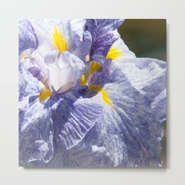 The love of the Iris by Teresa Thompson Metal Print