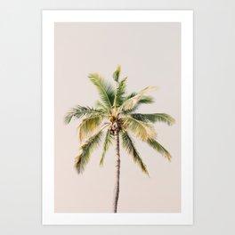 Palm tree - beige minimalist tropical photography in hd Art Print