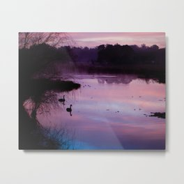 Pond Metal Print