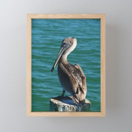 Pelican On A Pole Framed Mini Art Print
