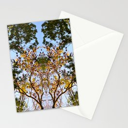 Alexandra Park Trees in the Golden Light Stationery Cards
