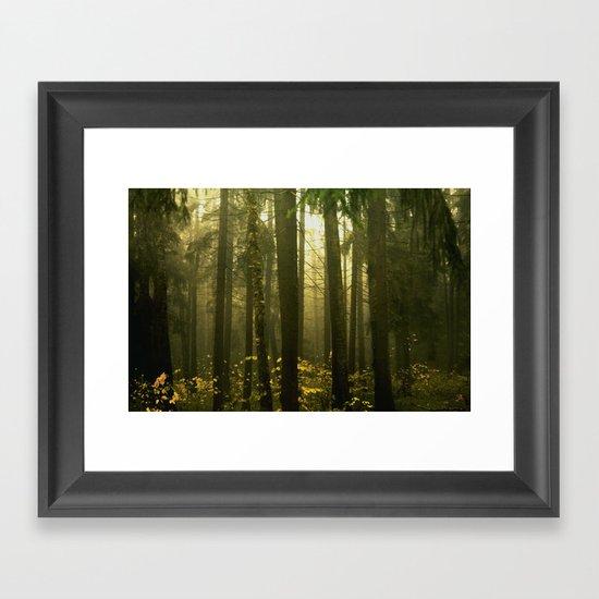 Forest#5 Framed Art Print