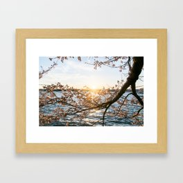 Sun Over the Horizon Framed Art Print
