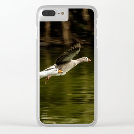Landing of ducks on the lake of Palermo. Clear iPhone Case