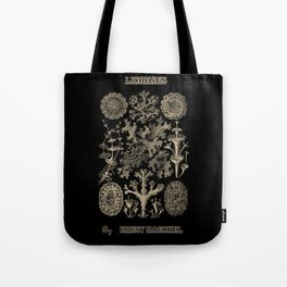 """""""Lichenes"""" from """"Art Forms of Nature"""" by Ernst Haeckel Tote Bag"""