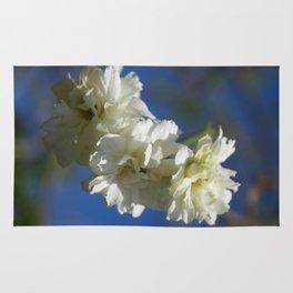 Deutzia Cream Petals Against Blue Sky Rug