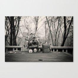 Evanescent Beginnings  Canvas Print