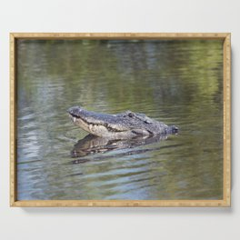 Large American alligator looking out of water in Florida lake Serving Tray