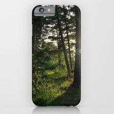 Entering Narnia iPhone 6s Slim Case