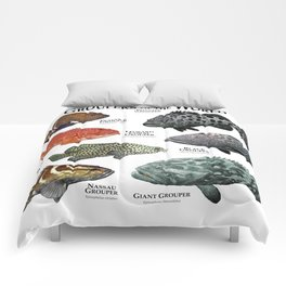 Groupers of the World Comforters