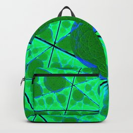 Delusions of a Multiverse Backpack