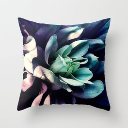 Pink Dahlia In the Last Rays of Sunset Throw Pillow