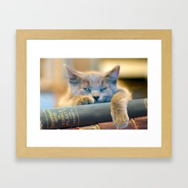 Hodge  Framed Art Print