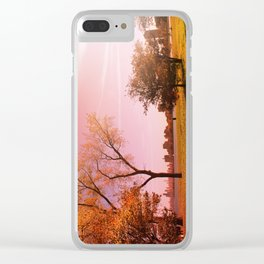 Montrose Sunset Clear iPhone Case