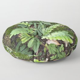 Moss and Fern Floor Pillow