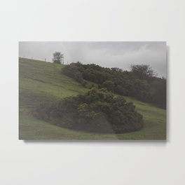 country Metal Print