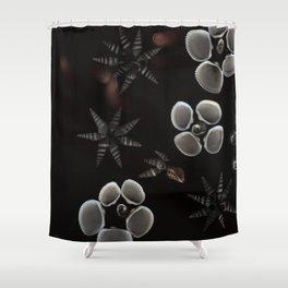 Seashells // #ScannedSeries Shower Curtain