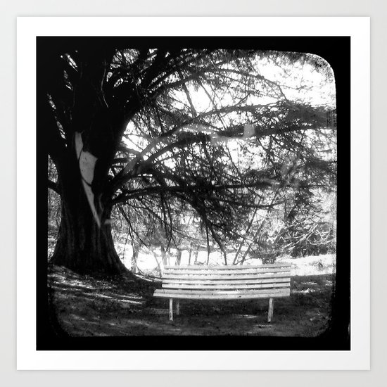 The Park Bench - Through The Viewfinder (TTV) Art Print