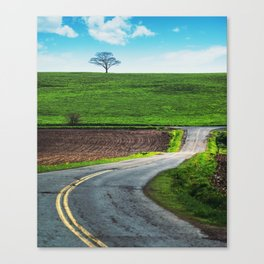 Vinegar Hill Road Canvas Print